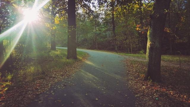 autunno a stoccolma