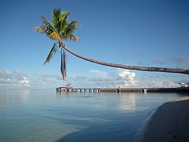 sulawesi isola