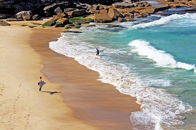 surfer australia sydney