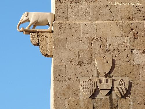 le due torri gemelle della citta vecchia, dell elefante e san pancrazio