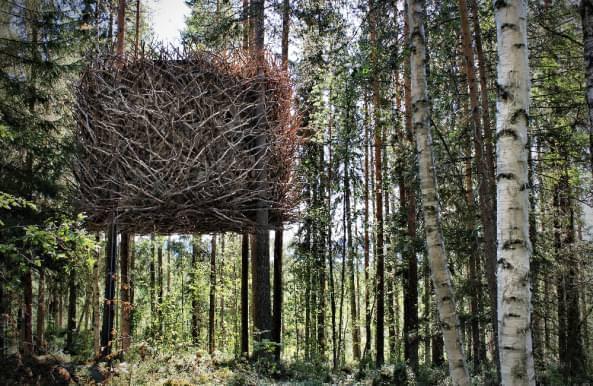 Casupola sugli alberi