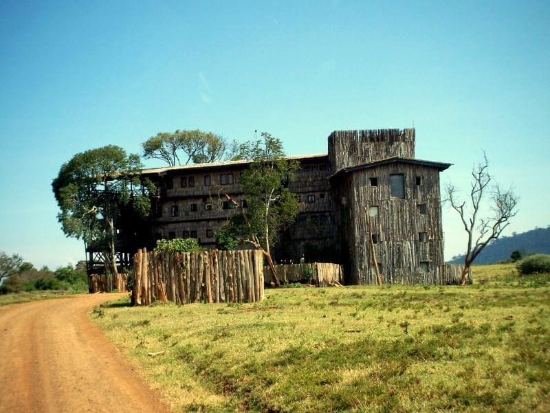 treetops hotel kenya