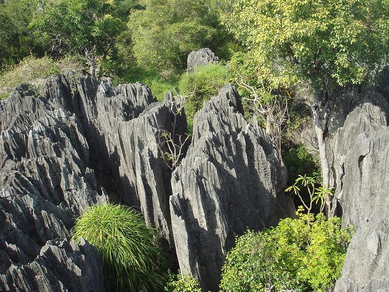 Riserva naturale integrale Tsingy, Madagascar
