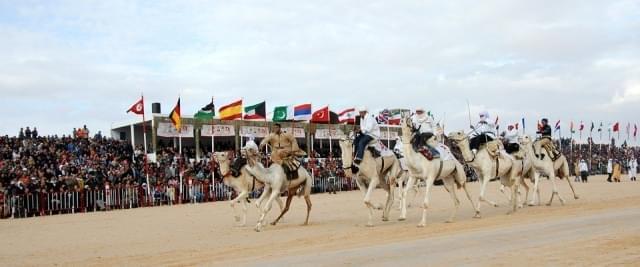 tunisia festival cavalli arabi