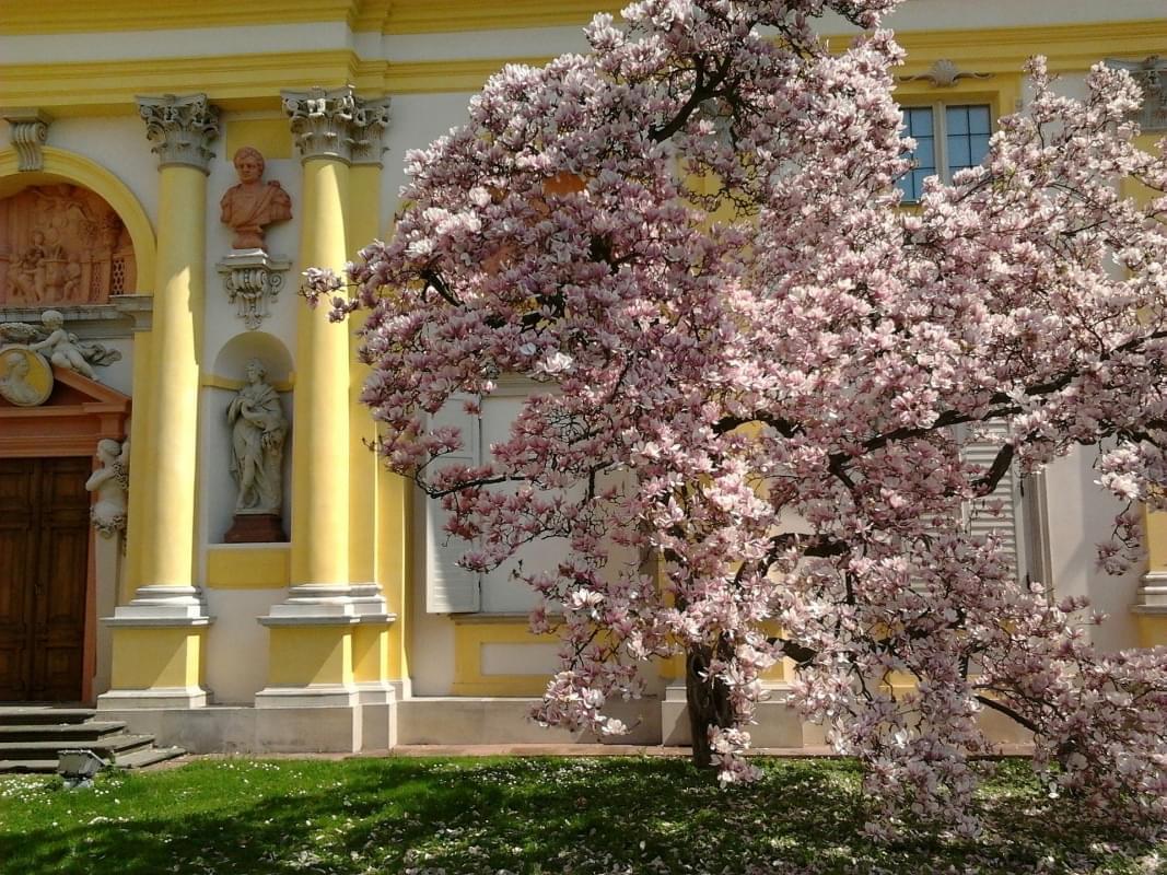 varsavia in primavera