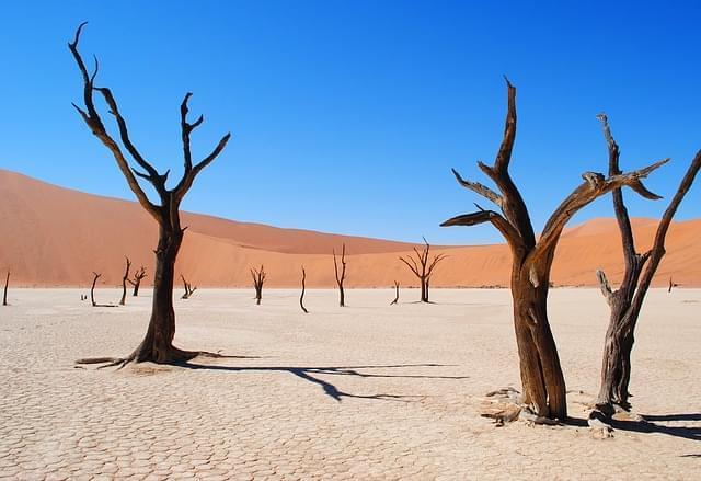 parco nazionale etosha in Namibia