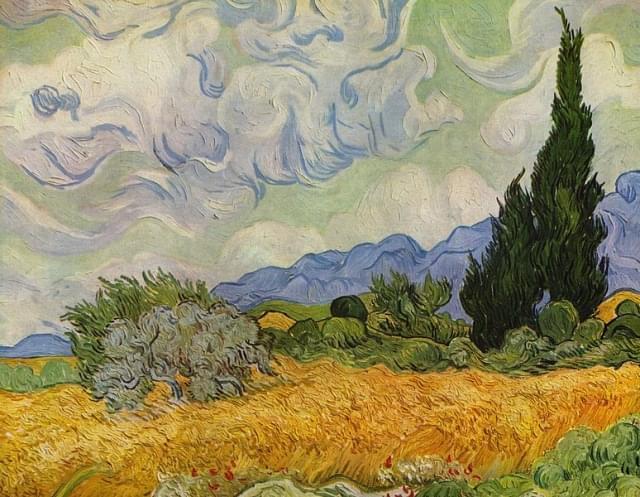 campo di grano con cipressi met