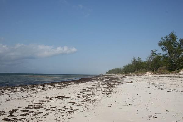 watamu beach(1)