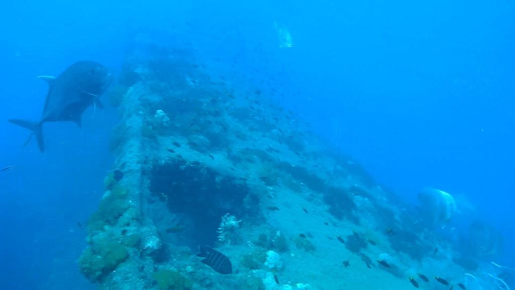 14 yongala wreck